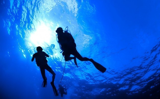 scuba-diving-diver-ocean-sea-underwater-background-171538